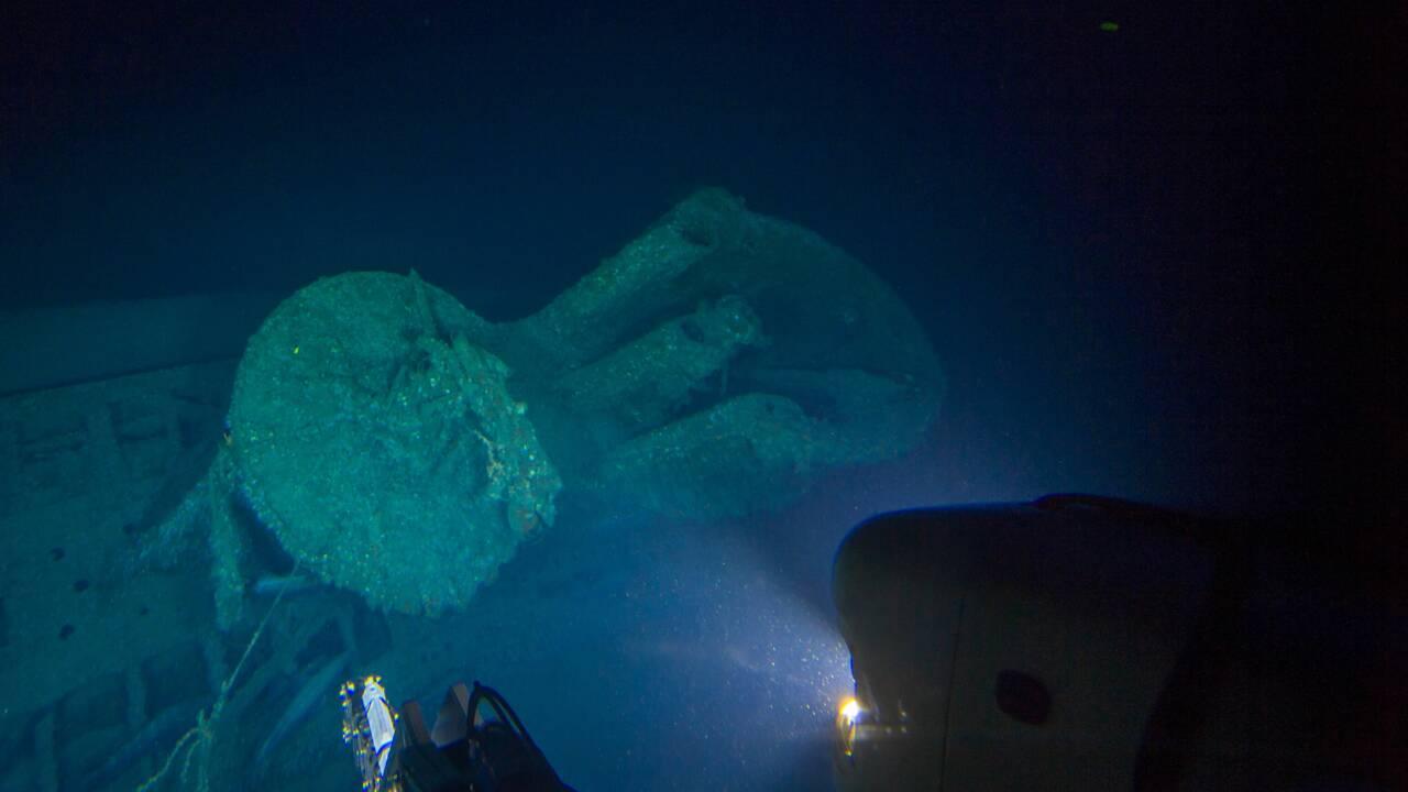 Ces épaves englouties depuis 80 ans sont devenues un habitat précieux pour la faune marine