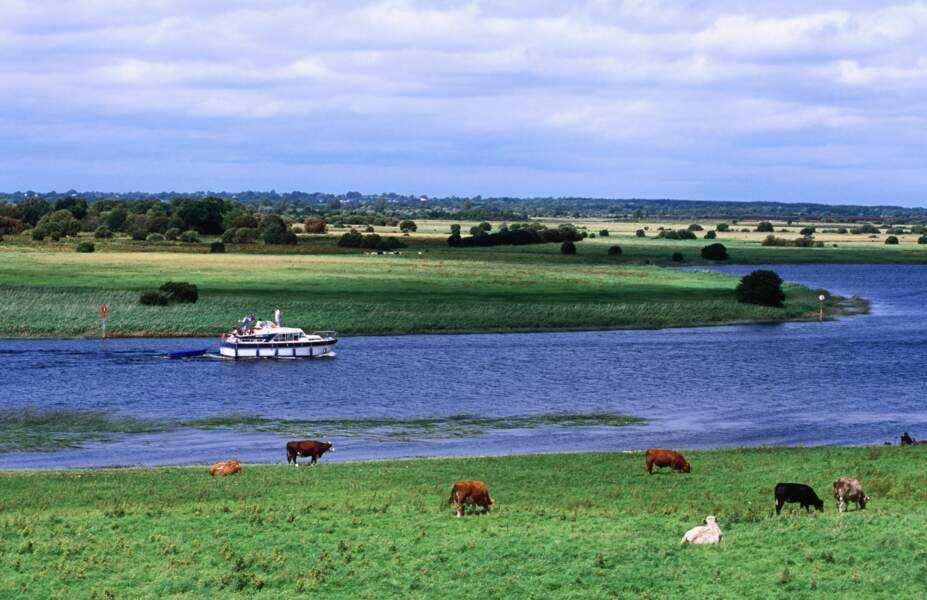 En péniche sur le fleuve Shannon, en Irlande