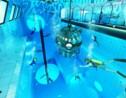 Ouverture de la piscine la plus profonde du monde en Pologne
