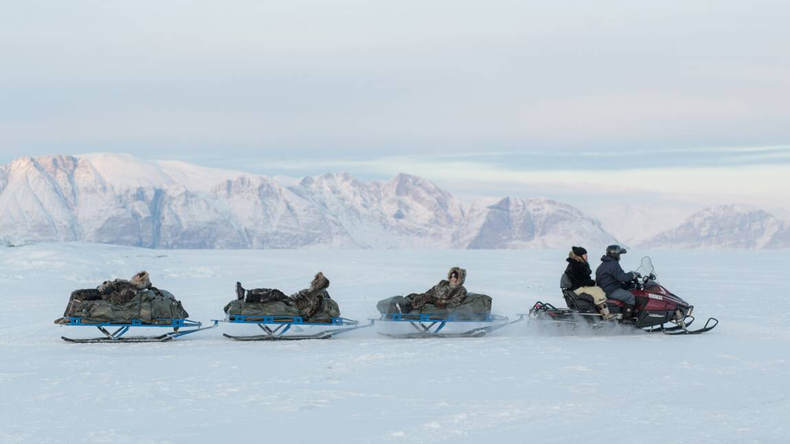Groenland : la vie inuite dans sa vérité crue, entre traditions et fonte des glaces