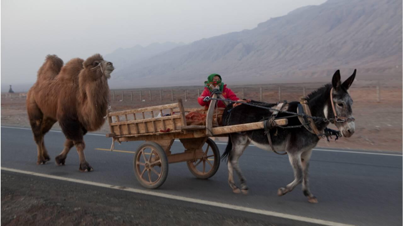 Quand GEO filait sur l'autoroute de la soie (2/2) : d'Aralsk à Ürümqi