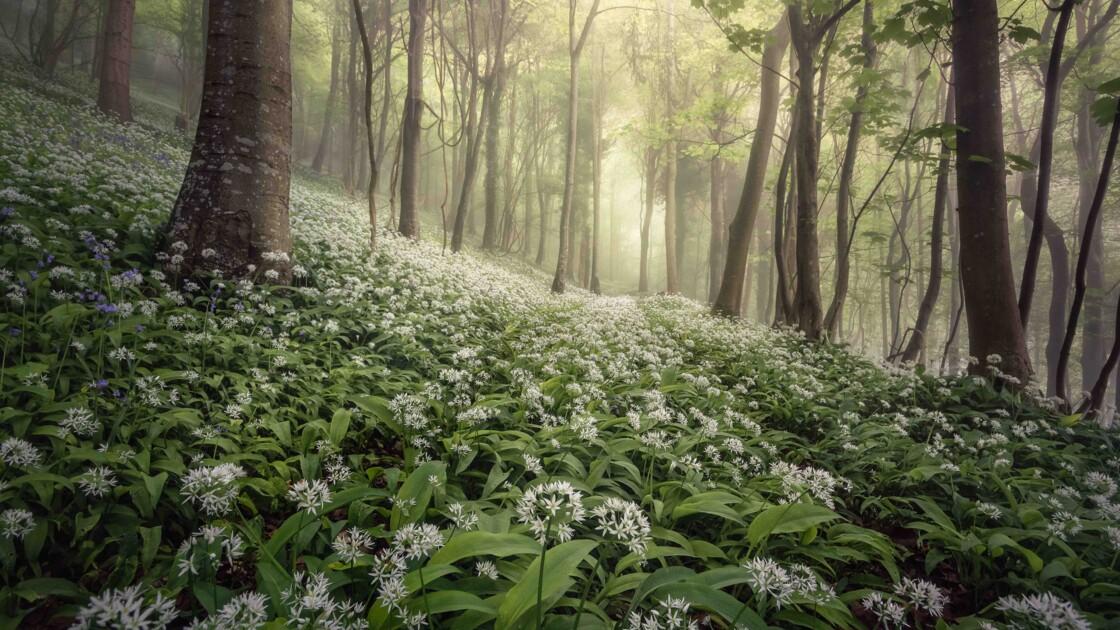 Les magnifiques photos de paysages du Royaume-Uni récompensées en 2020
