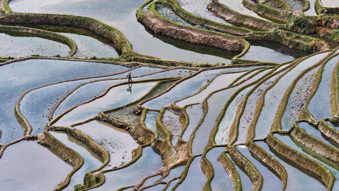 Instantané de photographe : Rizières de Yuanyang, par Tuul et Bruno Morandi
