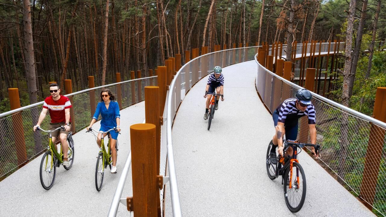 """Belgique : une piste cyclable pour """"pédaler dans les arbres"""" au beau milieu d'une forêt"""