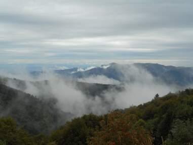 Vosges : nos meilleures balades pour les amateurs de nature