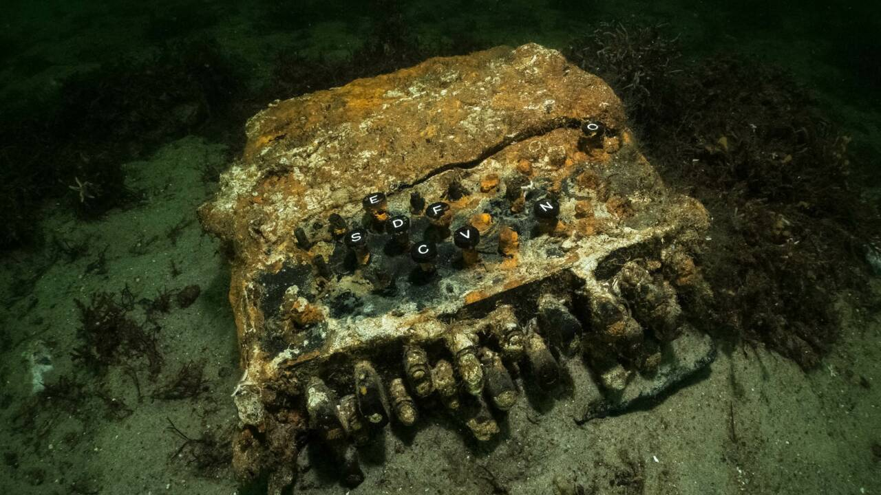 Une rare machine à chiffrer Enigma utilisée par les nazis découverte en mer Baltique