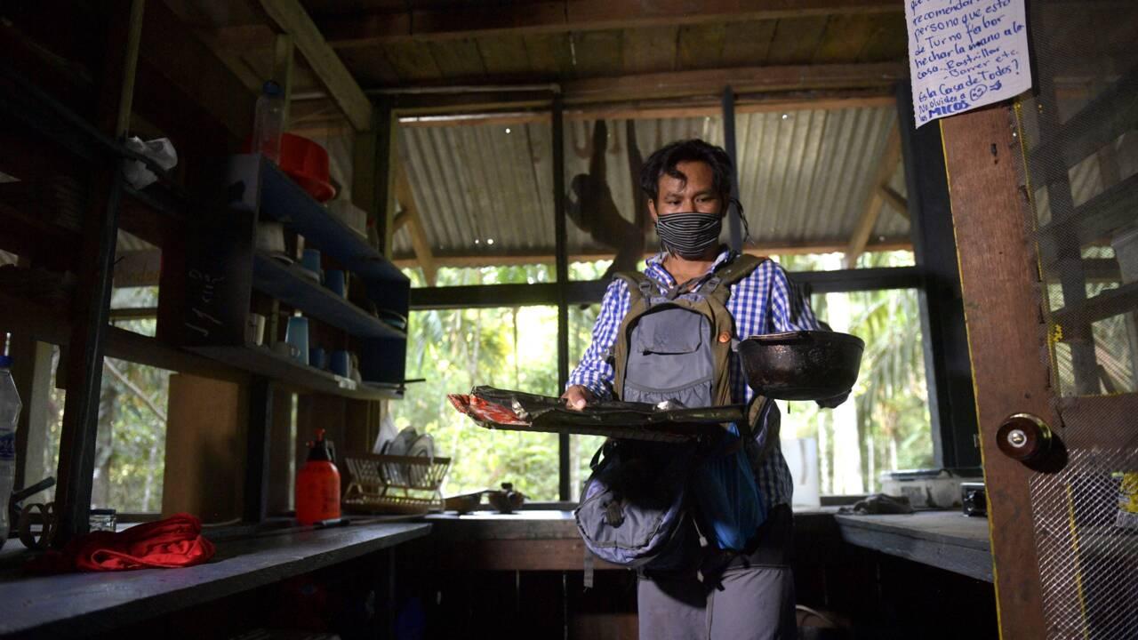 Dans la jungle d'Amazonie, un Amérindien recueille les singes orphelins