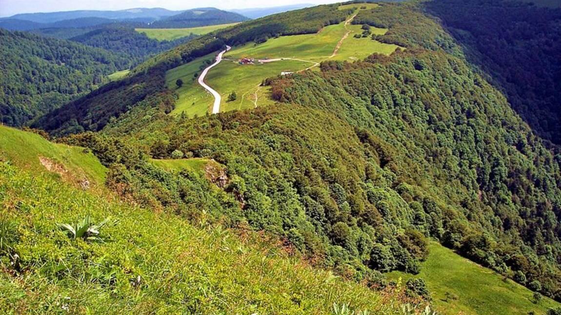Que faire dans les Vosges quand on aime la nature ?