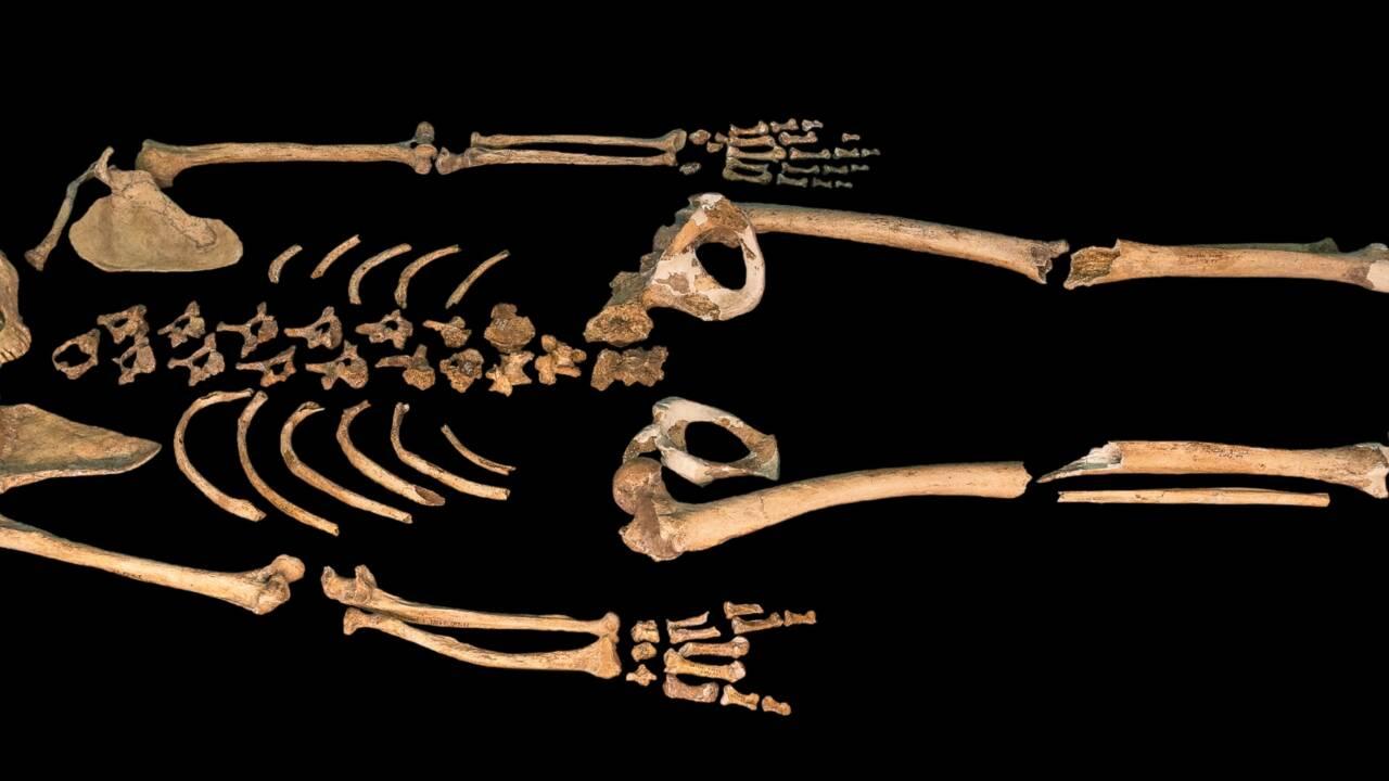 Archéologie : une nouvelle preuve que Néandertal enterrait ses morts