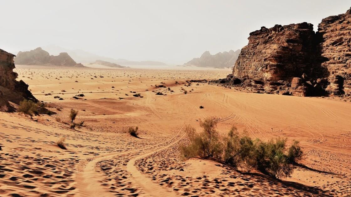 Jordanie : quatre virées dans le désert