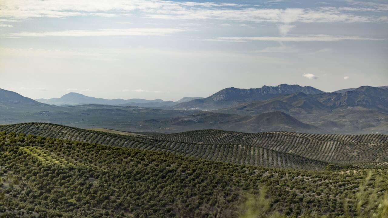 L'Andalousie, la destination parfaite pour refaire le plein de sensations