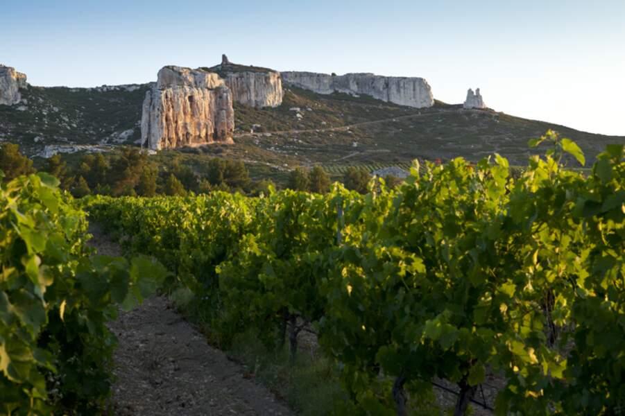 Le Château Calissanne, dans les Bouches-du-Rhône