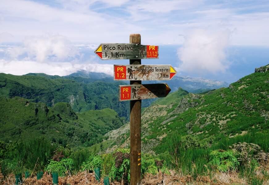 L'Ultra Trail de l'île de Madère, au Portugal