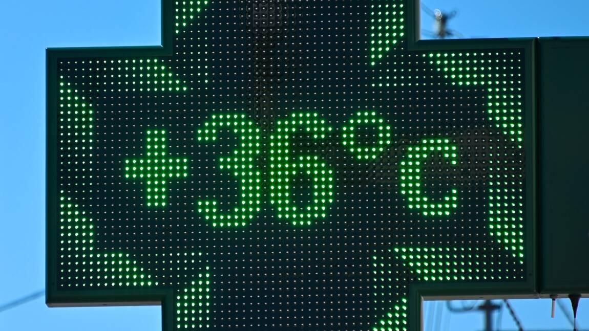 Réchauffement: 2020 année record annoncée en France