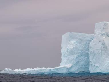 Souvenirs d'Antarctique : notre photographe raconte