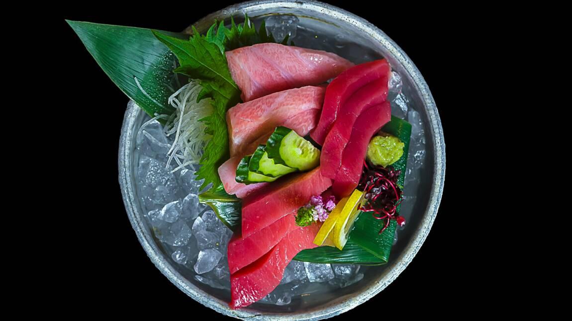 Quels thons peut-on manger sans les décimer ?