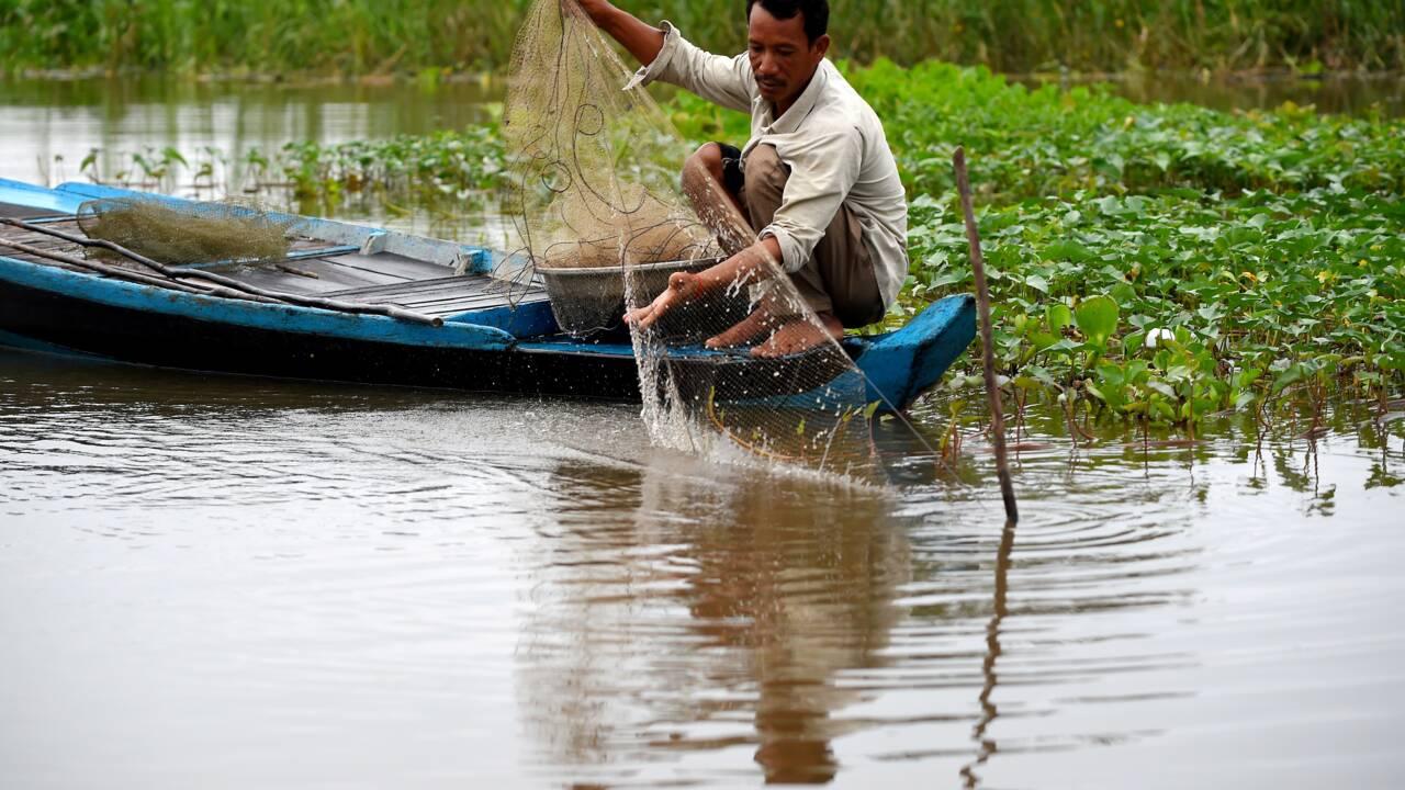 Cambodge:essentiel à la vie, le lac Tonlé Sap en péril