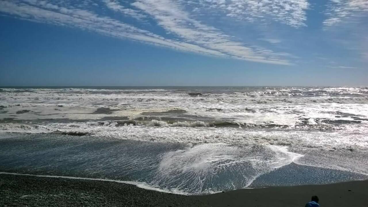 Dans le sud du Chili, la rude pêche artisanale dans l'eau glacée des Indiens lafkenches
