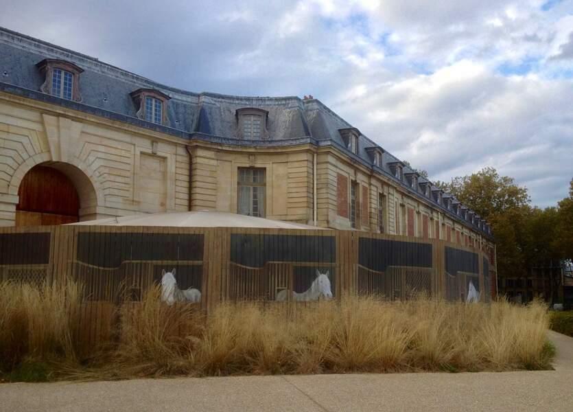 L'Académie équestre nationale du domaine de Versailles