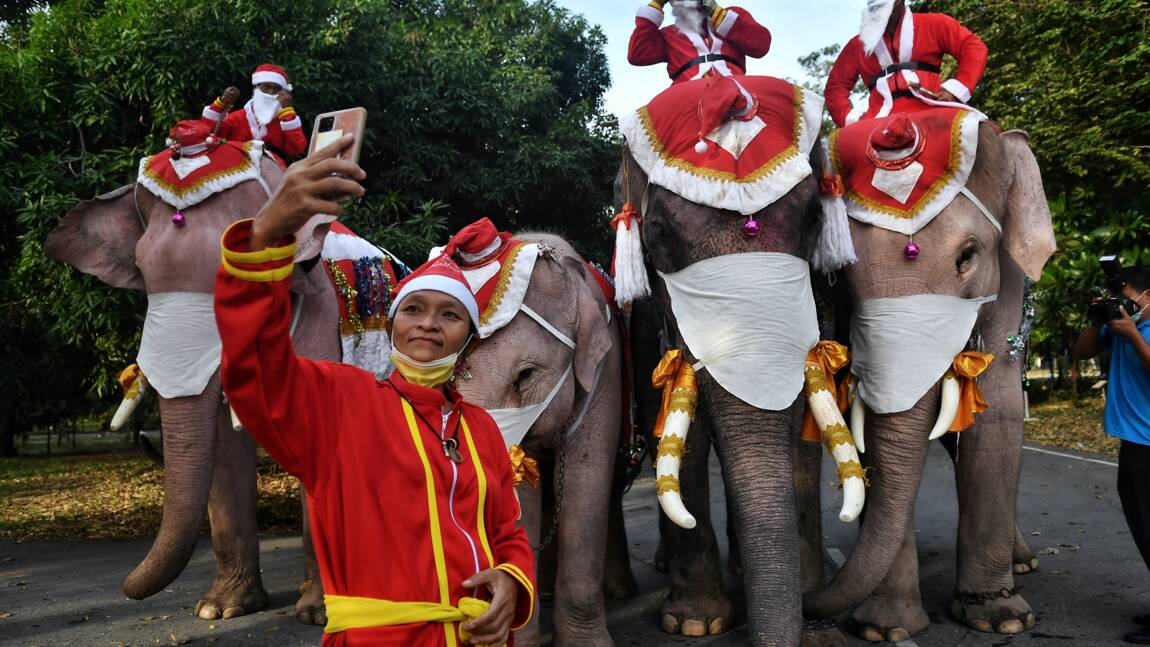 En Thaïlande, des éléphants déguisés en pères Noël distribuent des masques dans une école
