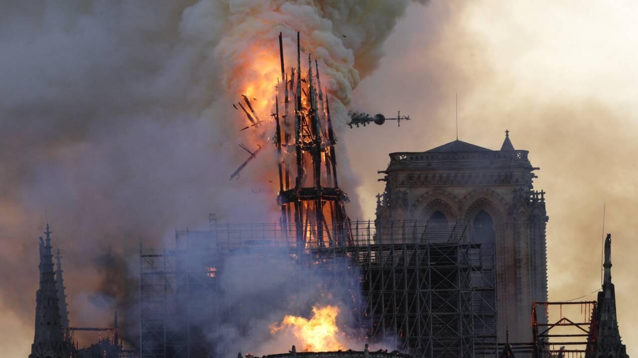 Notre-Dame de Paris : de la forêt à la charpente, la longue marche des chênes