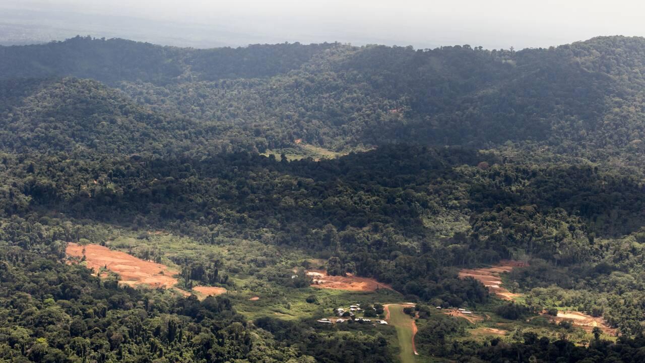 Montagne d'or en Guyane: recours de l'Etat contre la prolongation de la concession minière