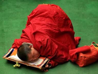 Tibet : À l'école du bouddhisme roi