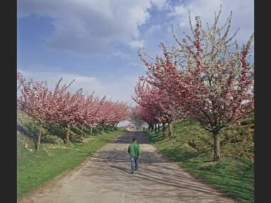 La France des villages : l'Ile-de-France