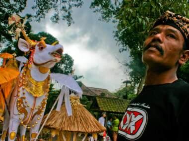 Bali : découverte du rite funéraire hindou