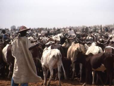 La traversée légendaire du Niger