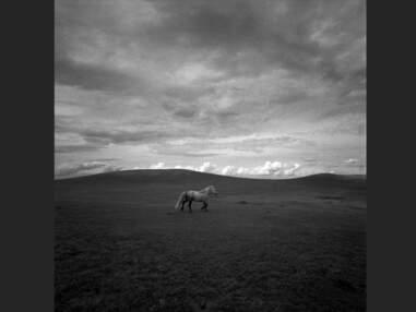 Familles de Mongolie, des steppes à la ville