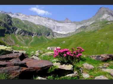 Pyrénées : la Gela, une vallée en danger