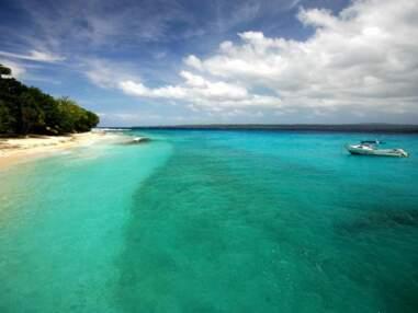 L'archipel du Vanuatu : une nature indomptée