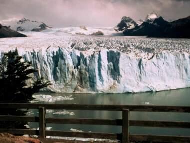 Au coeur des glaciers d'Argentine
