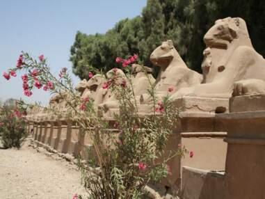 Vestiges de l'Egypte antique, le long du Nil