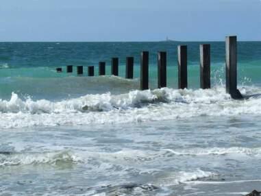 Noirmoutier : l'île continentale