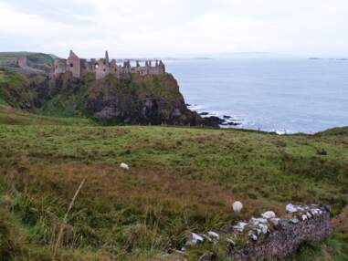 Irlande du Nord : la Chaussée des Géants et le grand air de la côte nord