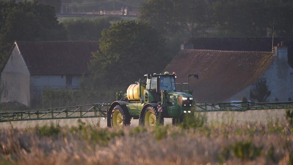 Les dérogations aux distances d'épandage de pesticides retoquées par le Conseil constitutionnel