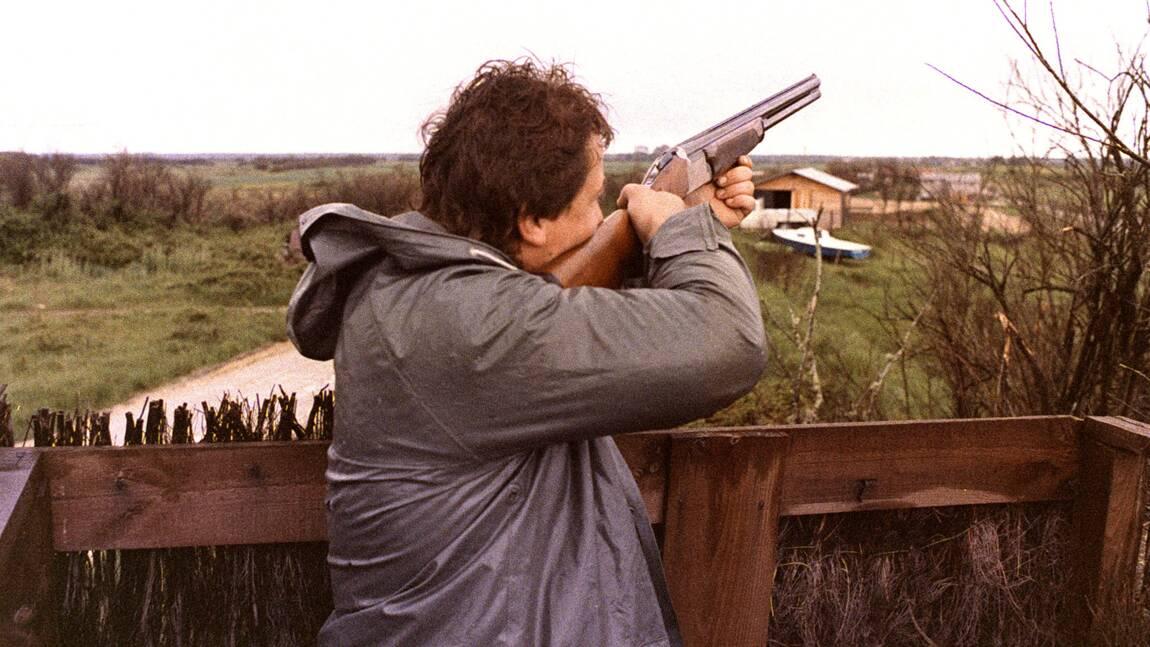 Le gouvernement interdit la chasse à la tourterelle des bois