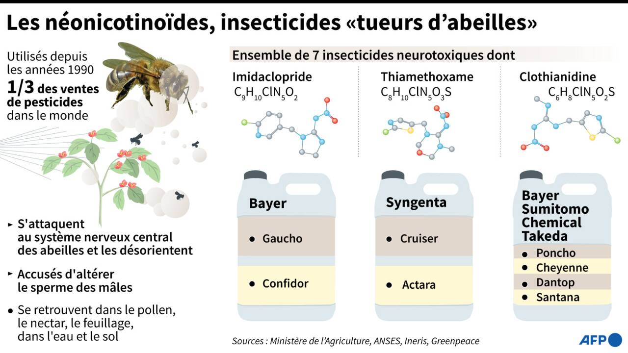 Le Canada limite, sans les interdire, les pesticides néonicotinoïdes