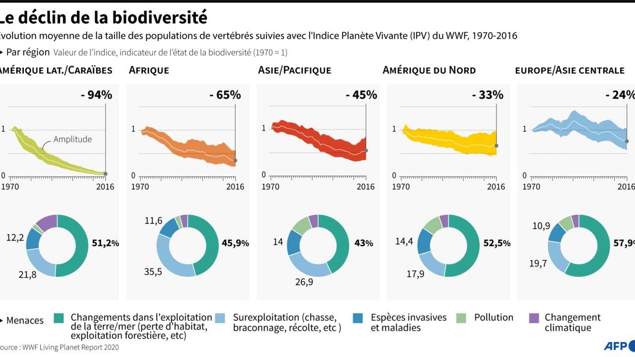 Covid: la COP15 sur la biodiversité de nouveau repoussée, à avril 2022
