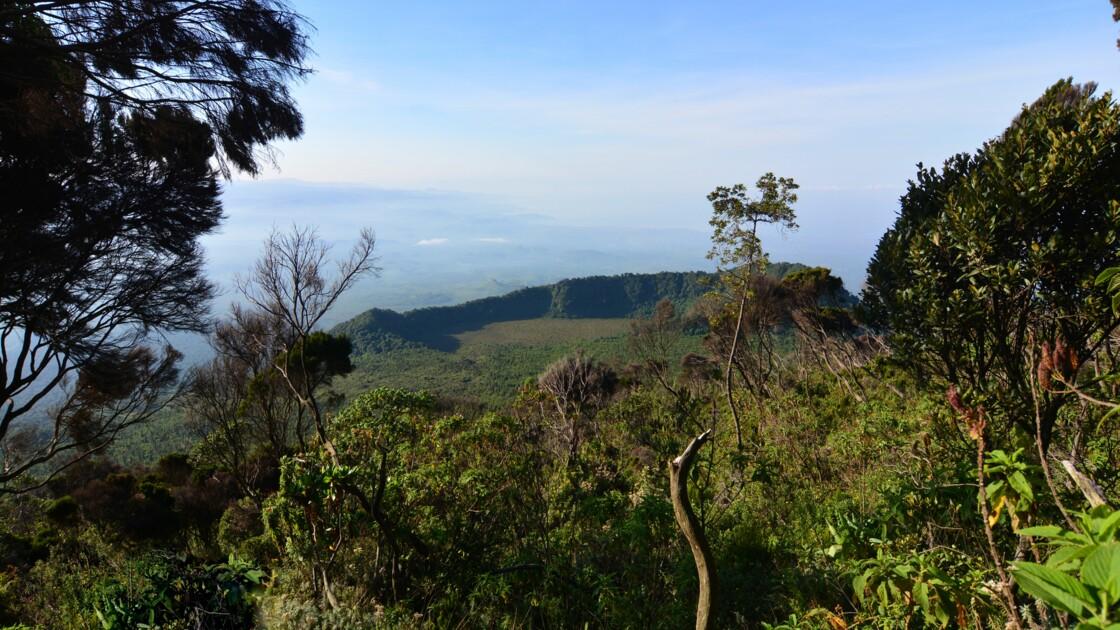RDC : six gardes tués lors d'une attaque dans le parc national des Virunga