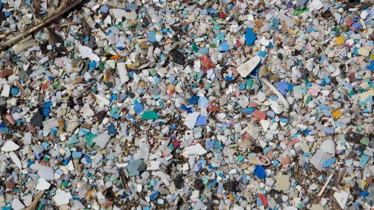 Les microplastiques qui polluent l'Arctique pourraient provenir de nos lessives
