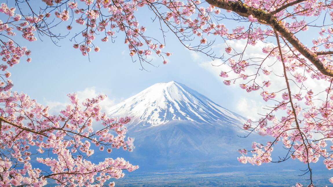 Tsundoku, komorebi, kawaakari… 15 mots japonais intraduisibles