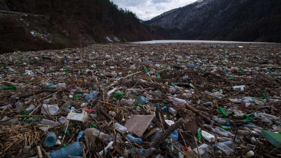 """La croissance a un """"coût dévastateur"""" pour la Nature, selon un rapport"""
