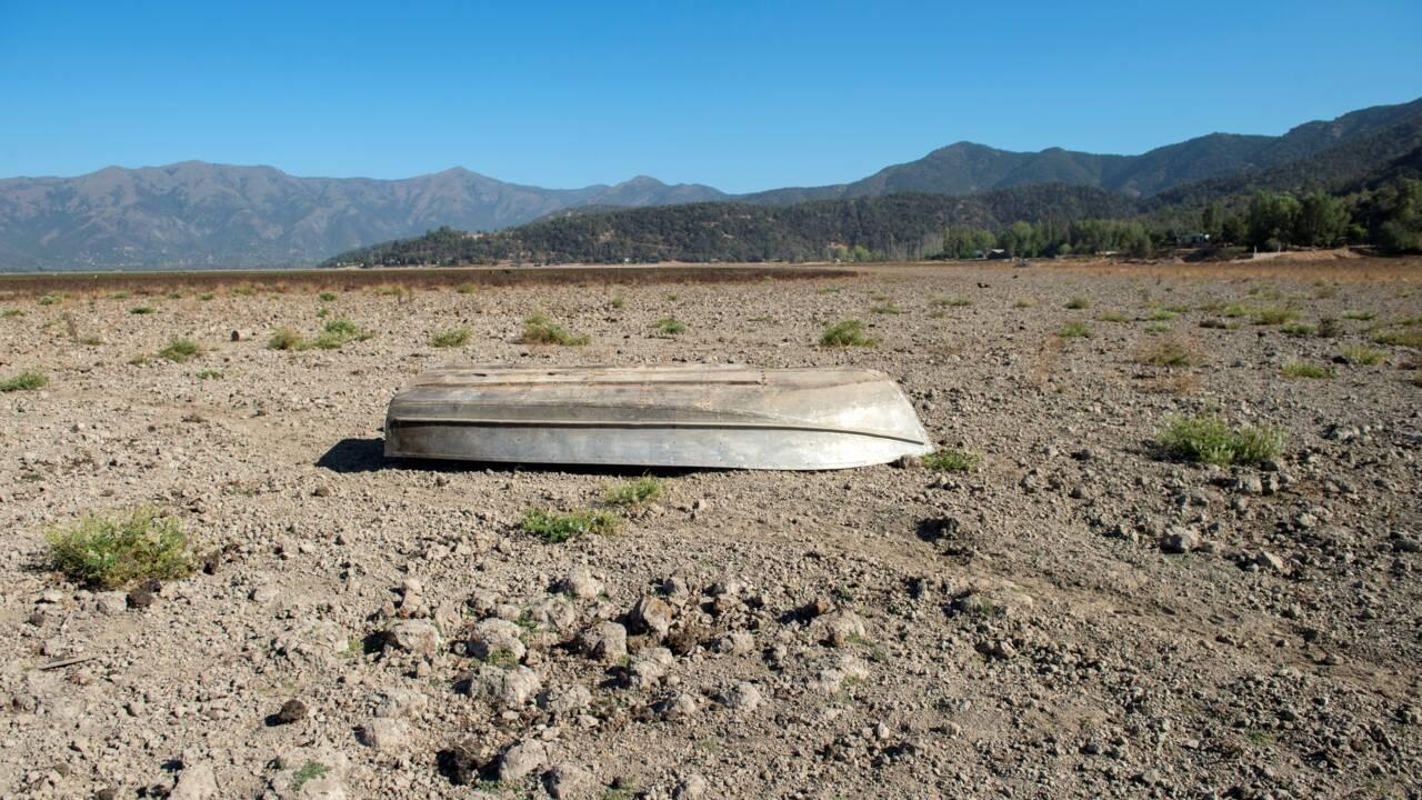 Une étude montre l'influence du réchauffement climatique dans l'apparition du covid