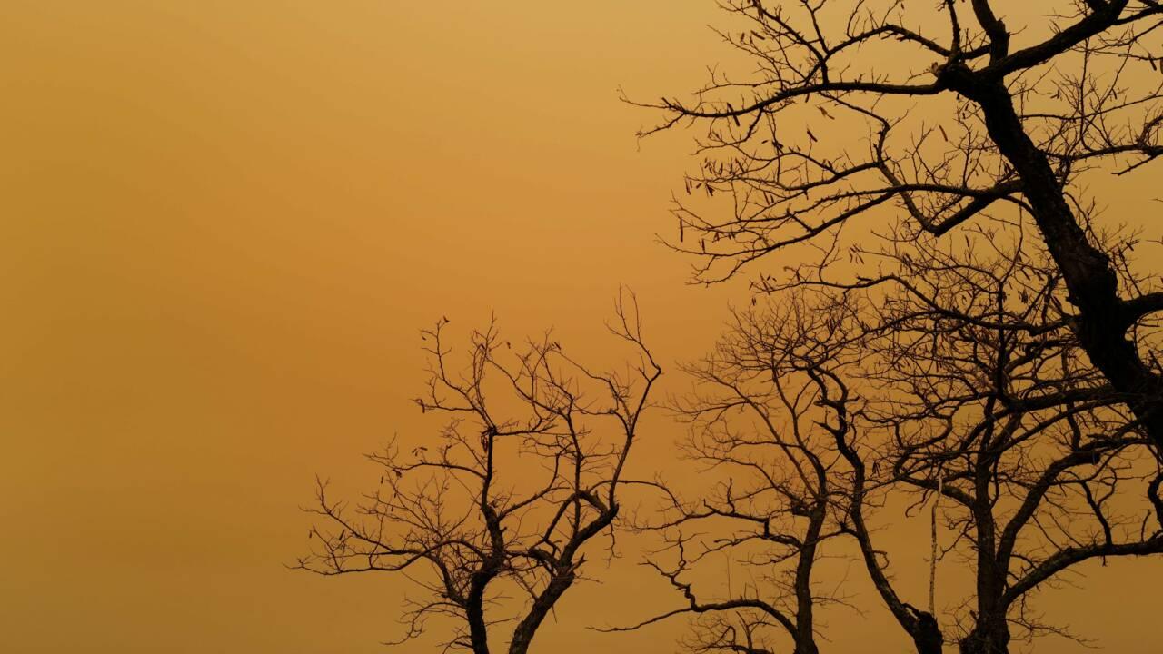 Du sable du Sahara teinte le ciel en jaune sur le sud et l'est de la France