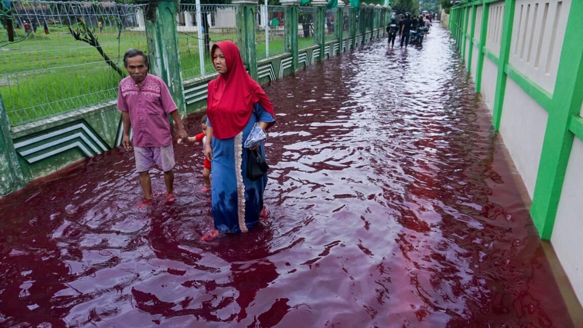 Indonésie: des flots de couleur rouge sang après des inondations