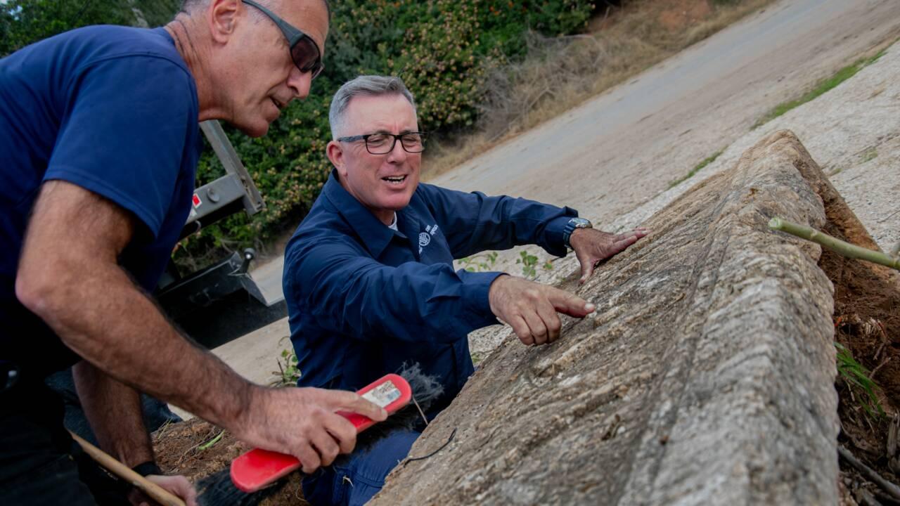 Deux sarcophages de 1800 ans découverts dans un parc animalier de Tel Aviv