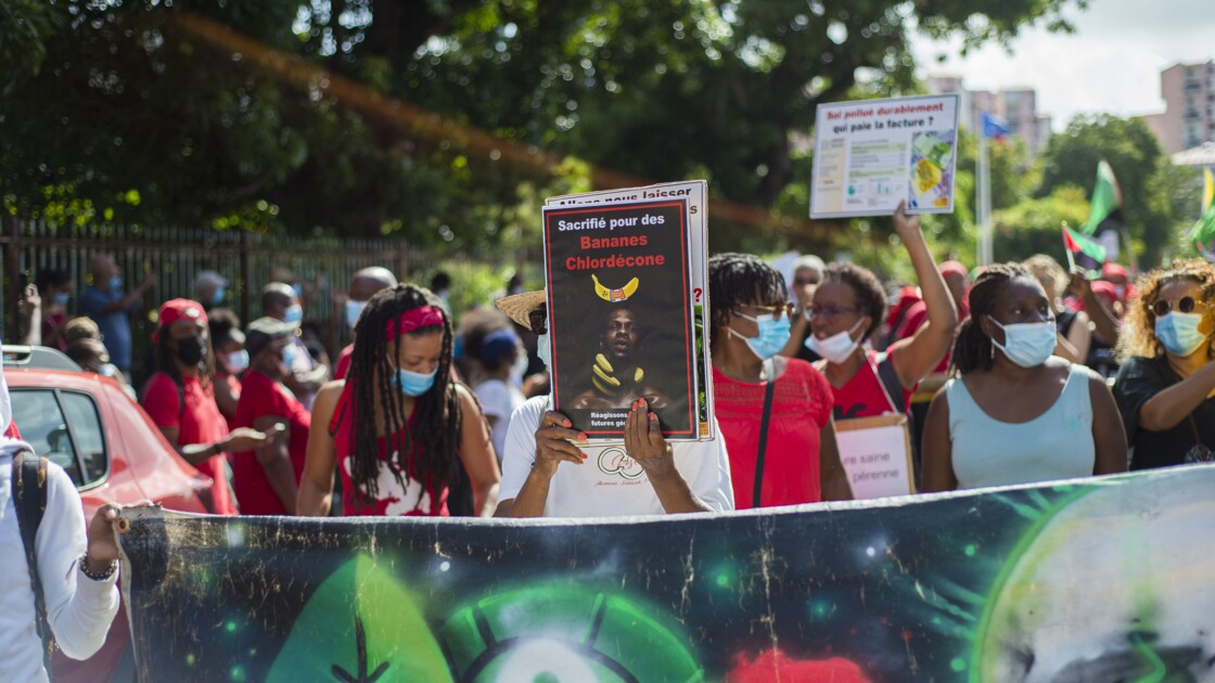 Empoisonnement au chlordécone aux Antilles : des avocats contestent la prescription et portent plainte